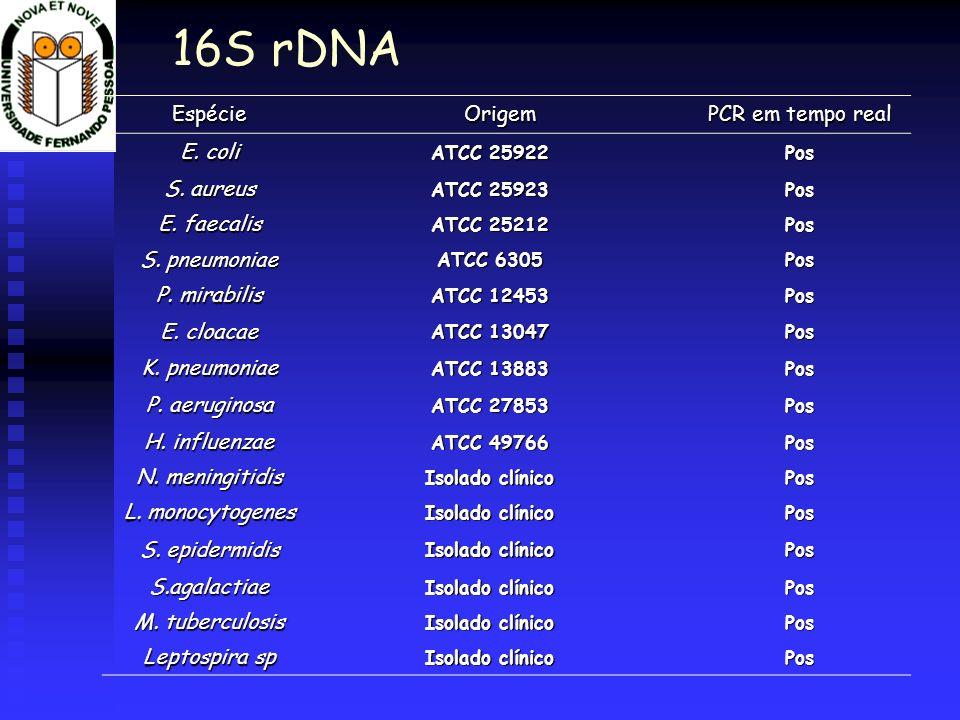 16S rDNA Espécie Origem PCR em tempo real E. coli S. aureus
