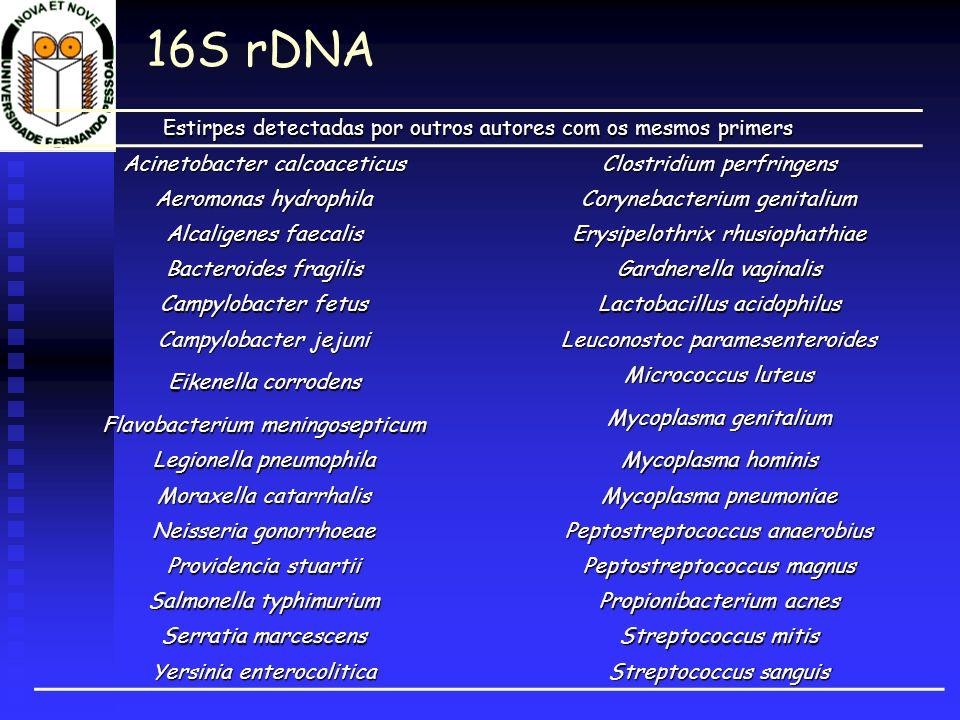 16S rDNA Estirpes detectadas por outros autores com os mesmos primers