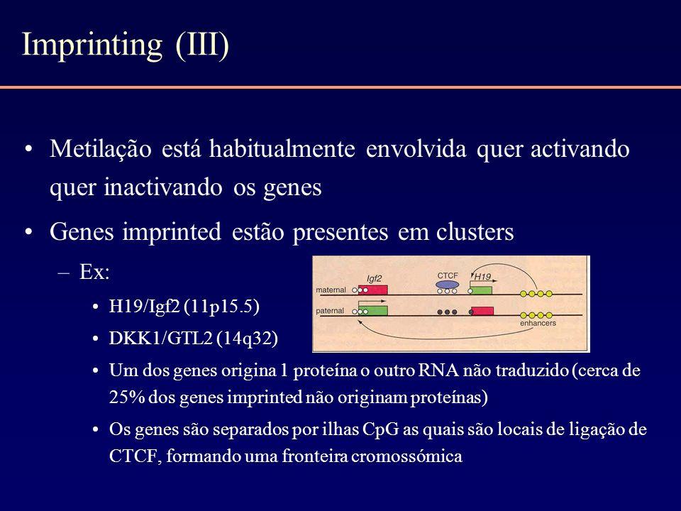 Imprinting (III) Metilação está habitualmente envolvida quer activando quer inactivando os genes. Genes imprinted estão presentes em clusters.