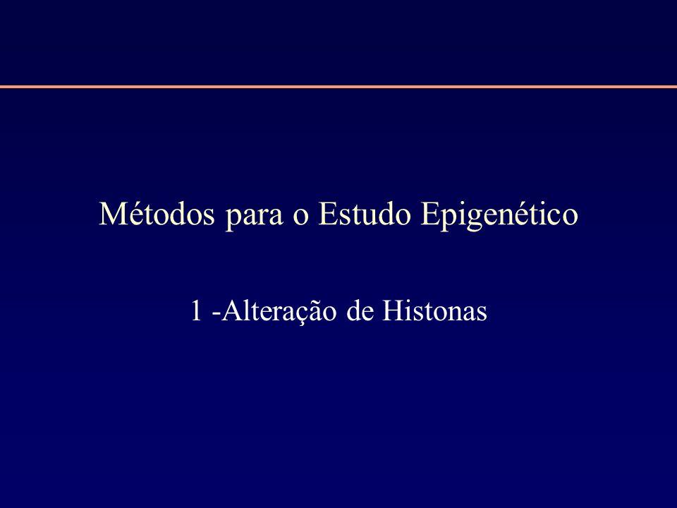 Métodos para o Estudo Epigenético