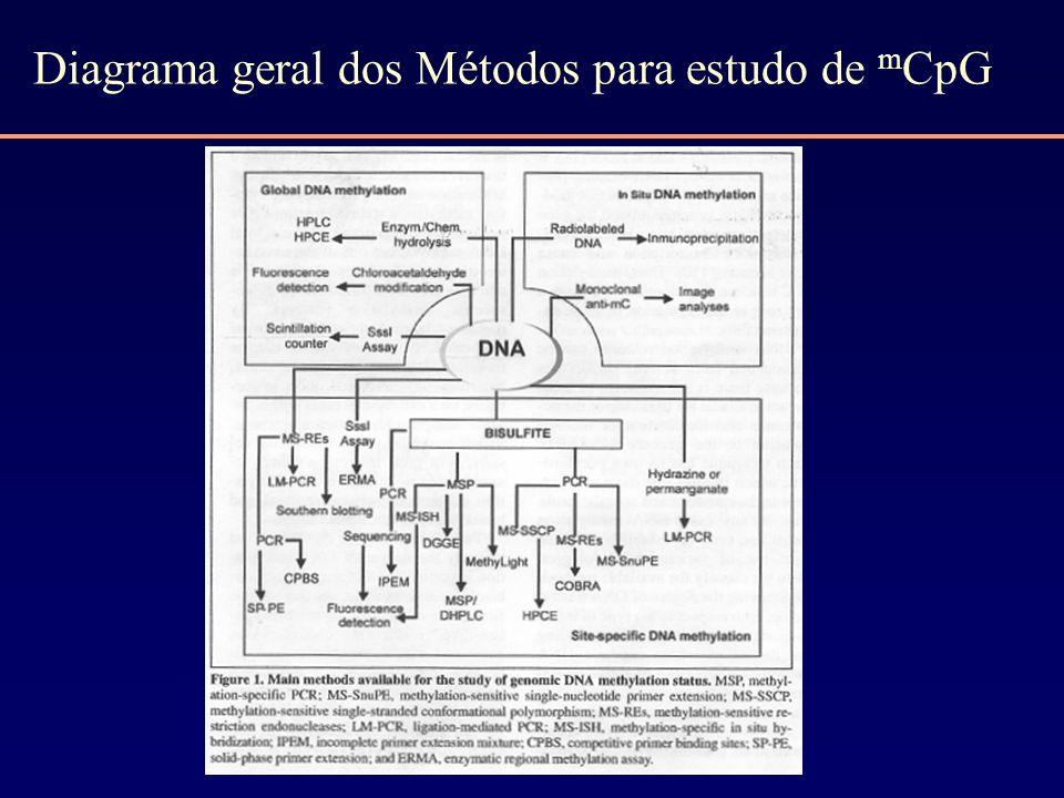 Diagrama geral dos Métodos para estudo de mCpG