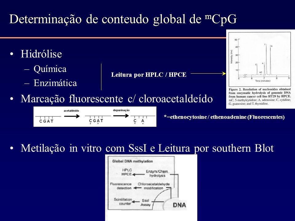 Determinação de conteudo global de mCpG