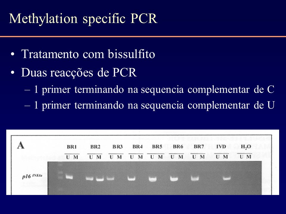Methylation specific PCR