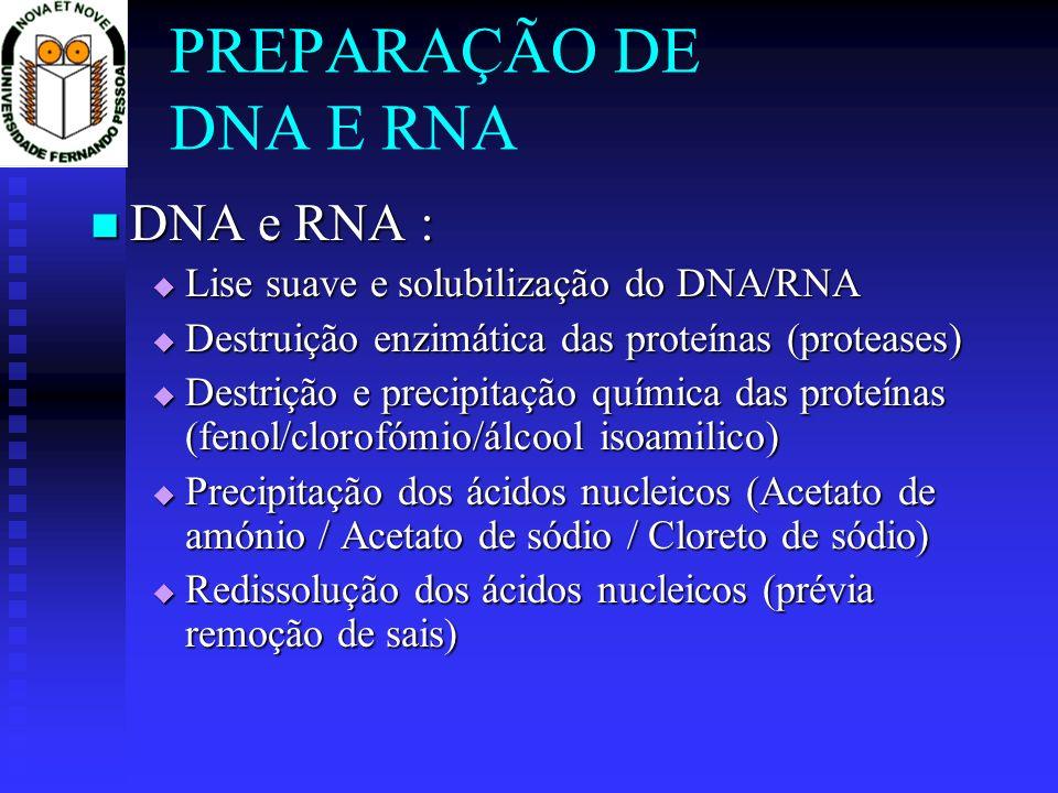 PREPARAÇÃO DE DNA E RNA DNA e RNA :