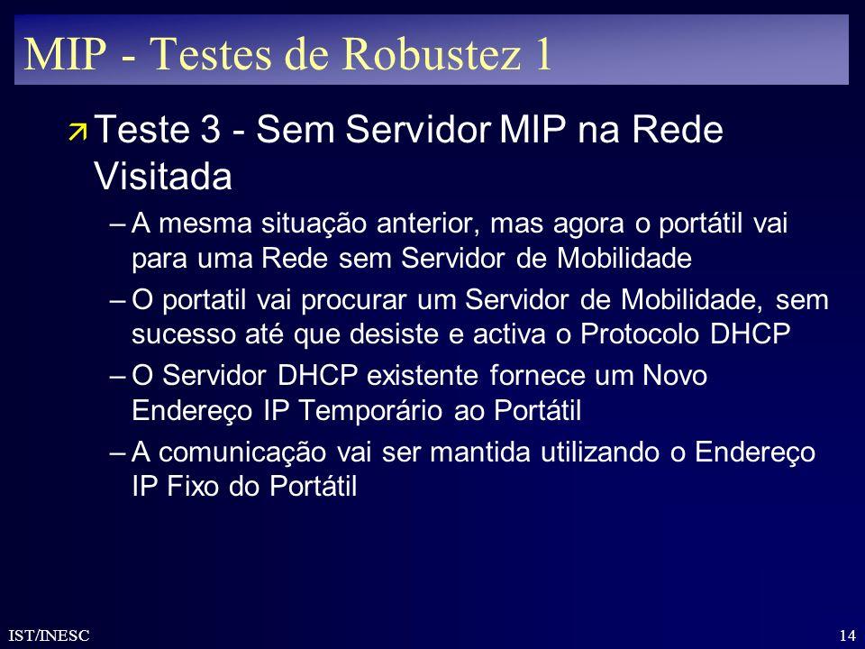 MIP - Testes de Robustez 1