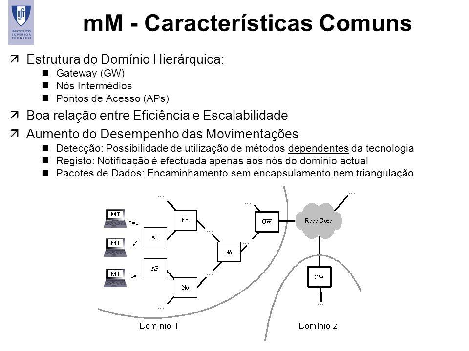 mM - Características Comuns