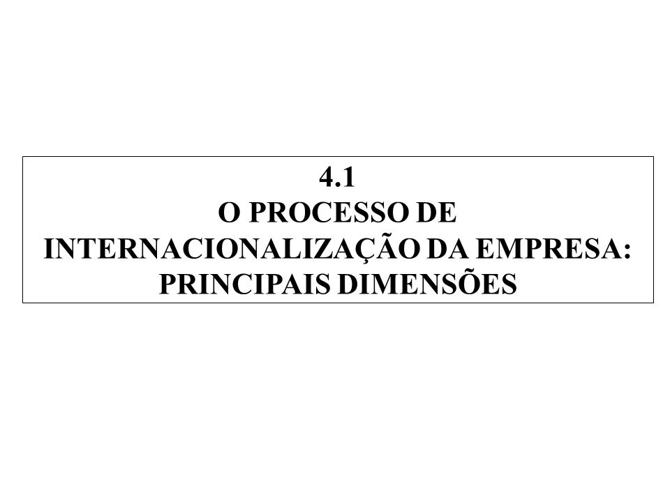 4.1 O PROCESSO DE INTERNACIONALIZAÇÃO DA EMPRESA: PRINCIPAIS DIMENSÕES