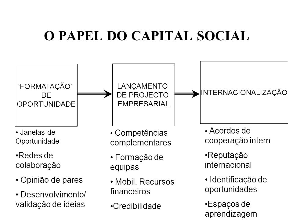 O PAPEL DO CAPITAL SOCIAL
