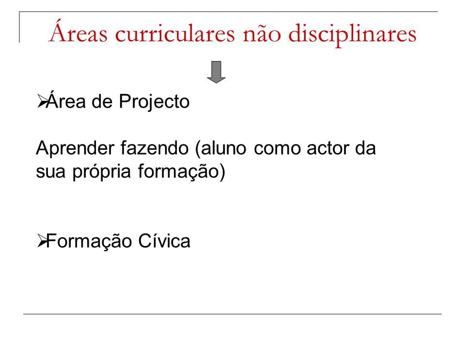 Áreas curriculares não disciplinares