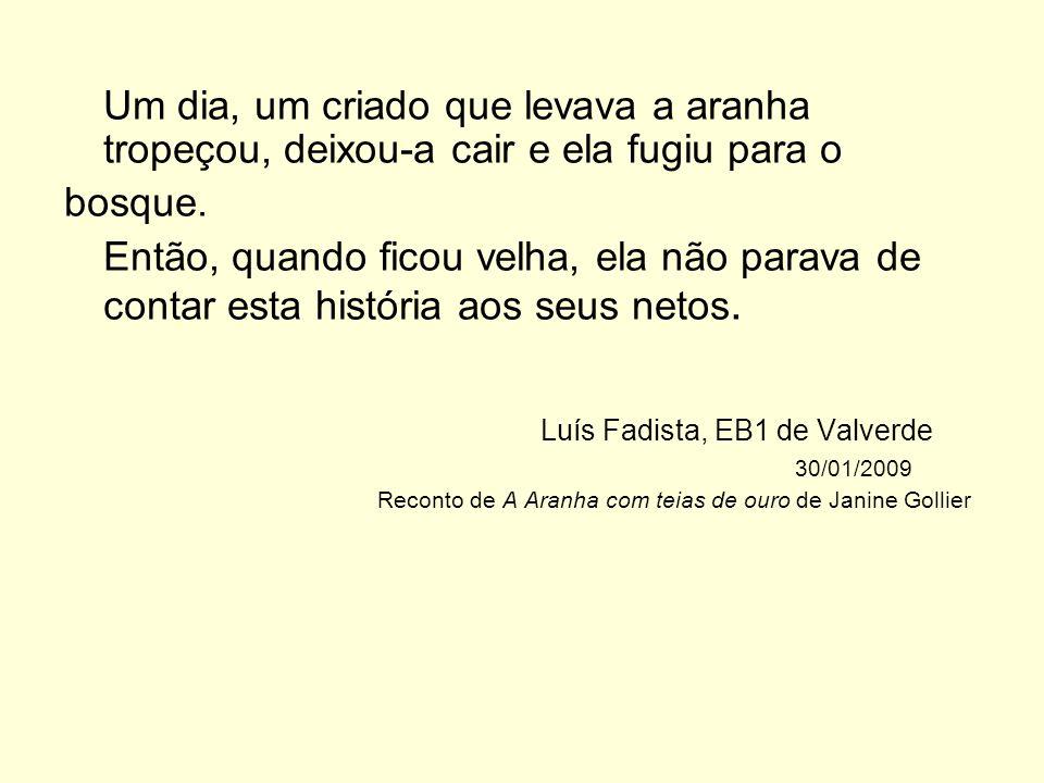 Luís Fadista, EB1 de Valverde 30/01/2009
