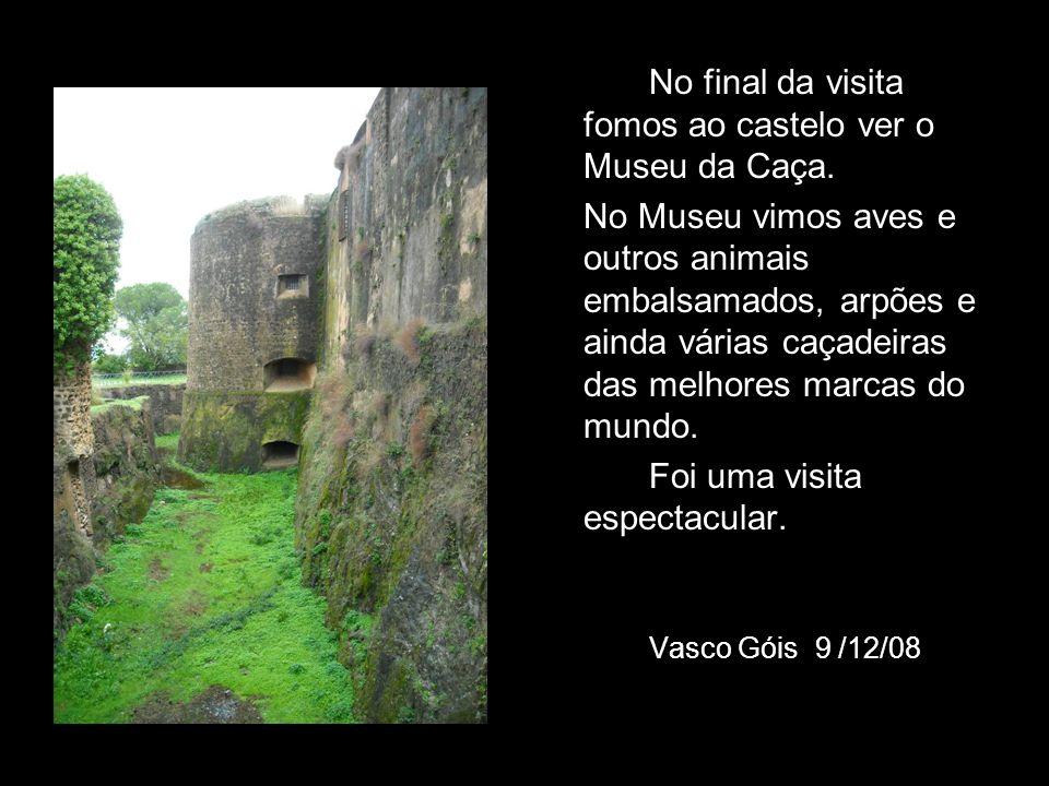 No final da visita fomos ao castelo ver o Museu da Caça.