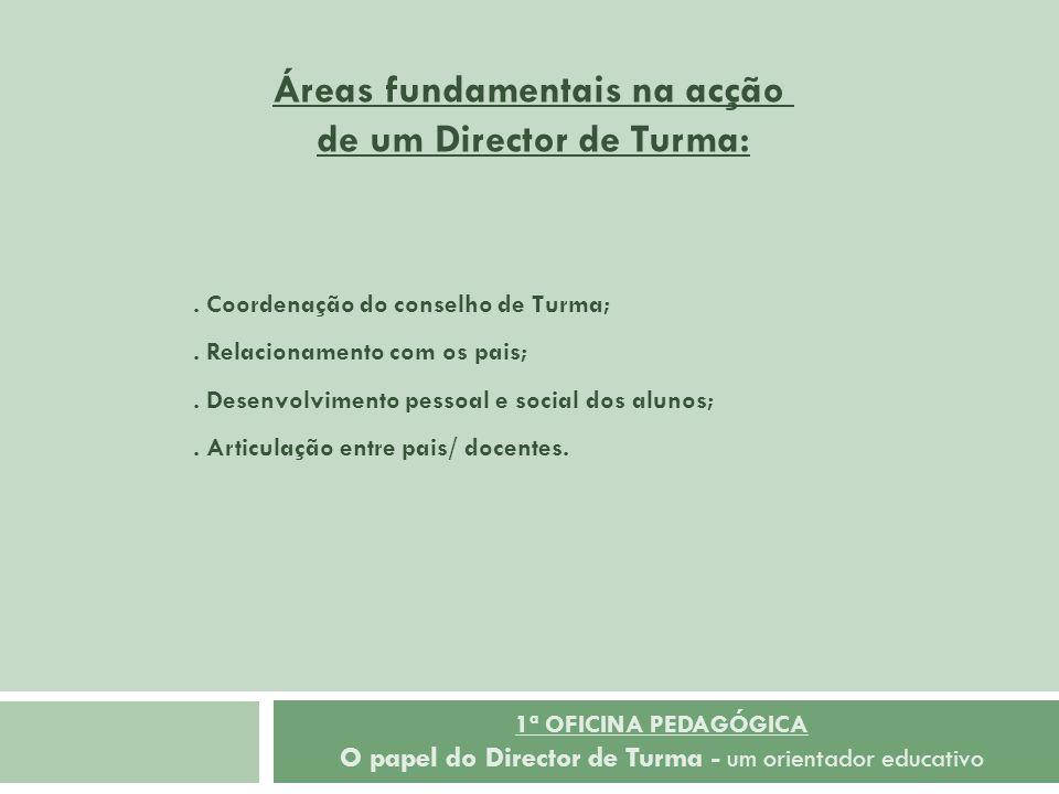 Áreas fundamentais na acção de um Director de Turma: