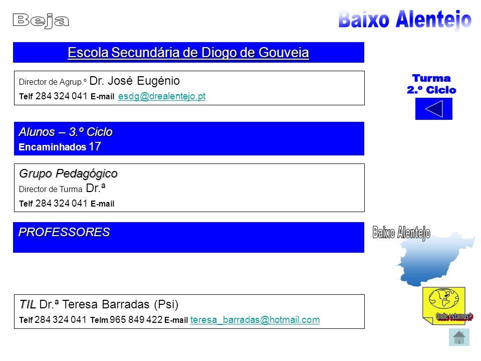 Escola Secundária de Diogo de Gouveia