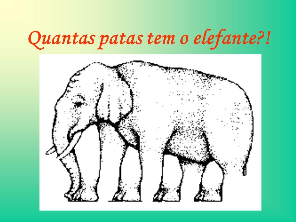 Quantas patas tem o elefante !