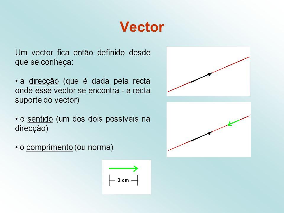 Vector Um vector fica então definido desde que se conheça: