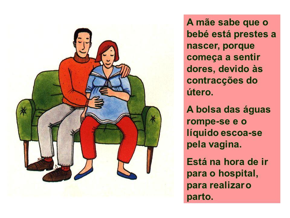 A mãe sabe que o bebé está prestes a nascer, porque começa a sentir dores, devido às contracções do útero.