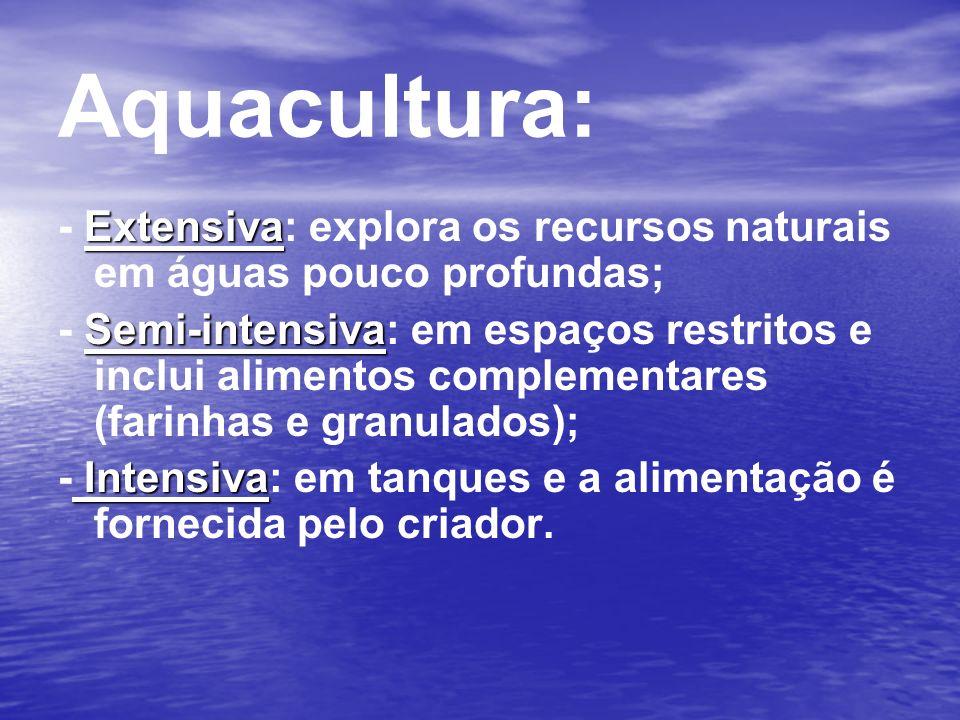 Aquacultura: - Extensiva: explora os recursos naturais em águas pouco profundas;