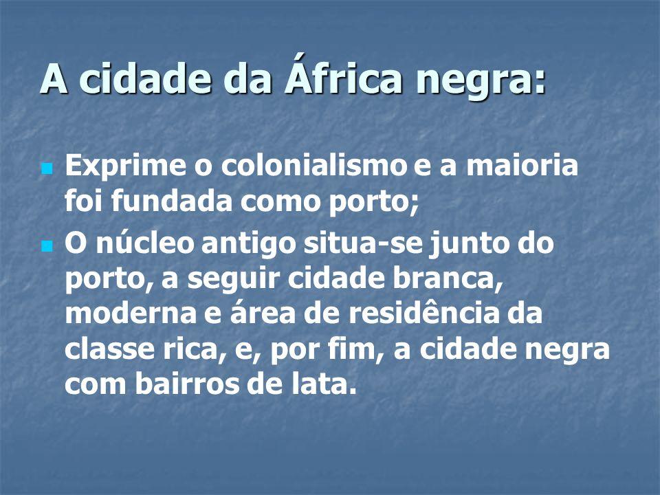 A cidade da África negra: