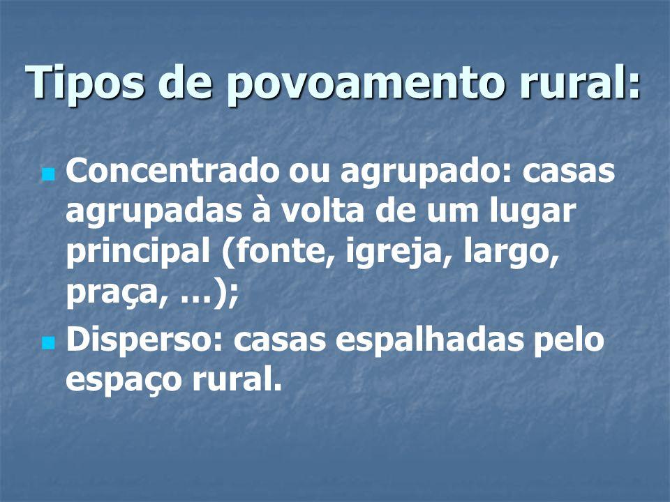 Tipos de povoamento rural: