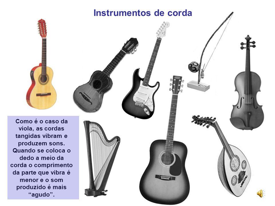 Instrumentos de corda