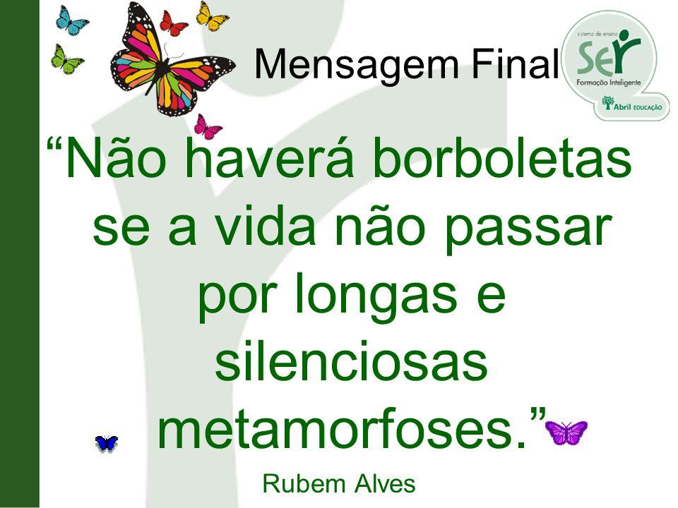 Mensagem Final Não haverá borboletas se a vida não passar por longas e silenciosas metamorfoses. Rubem Alves.