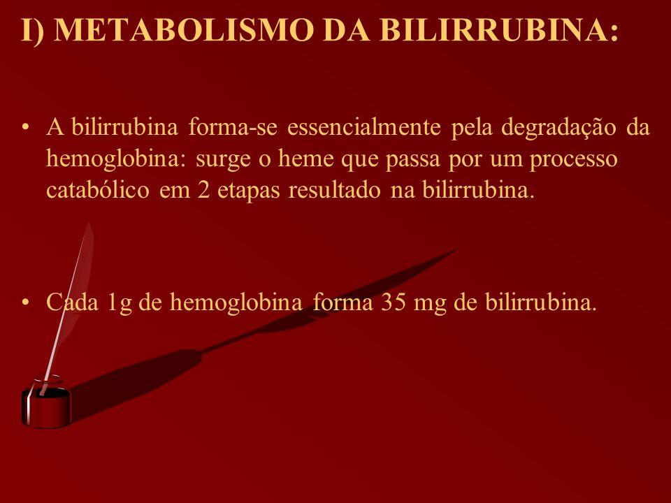 I) METABOLISMO DA BILIRRUBINA: