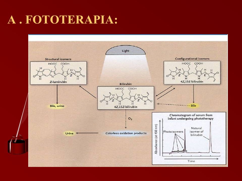 A . FOTOTERAPIA: