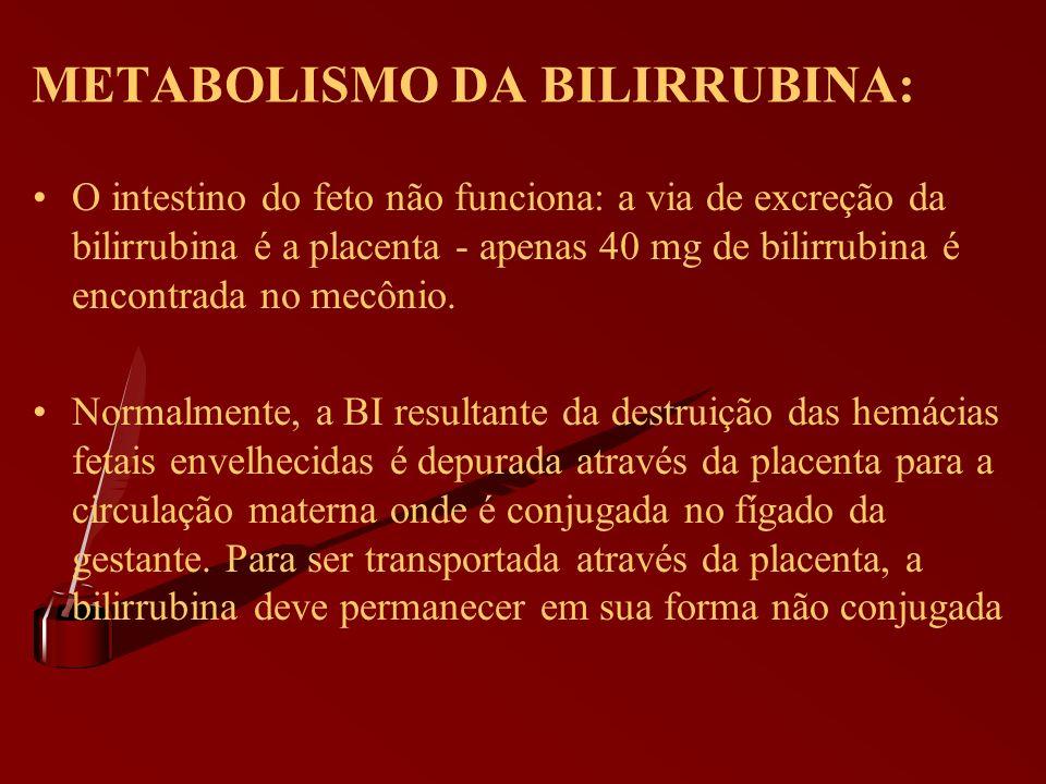 METABOLISMO DA BILIRRUBINA: