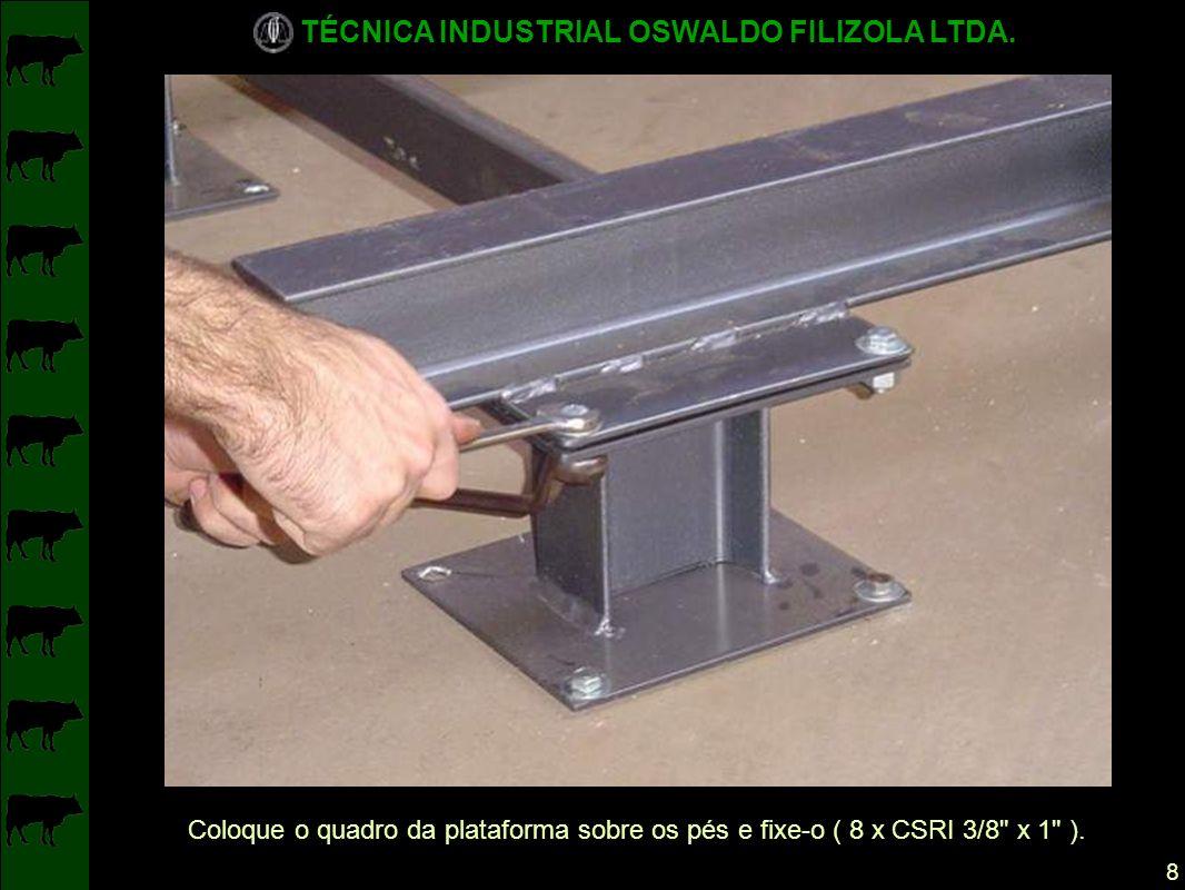 Coloque o quadro da plataforma sobre os pés e fixe-o ( 8 x CSRI 3/8 x 1 ).