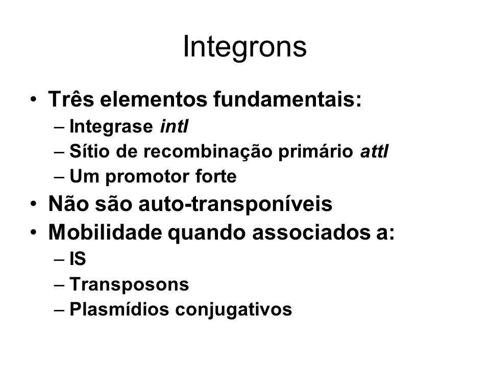 Integrons Três elementos fundamentais: Não são auto-transponíveis
