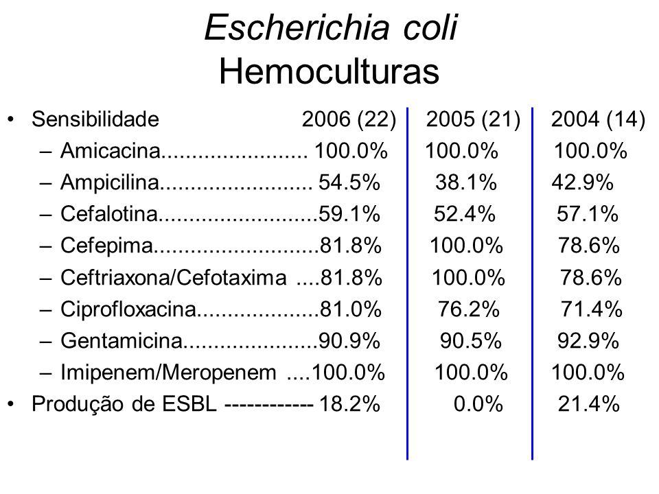 Escherichia coli Hemoculturas