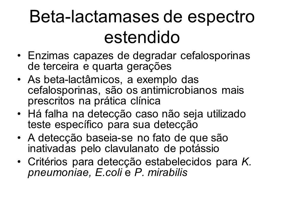 Beta-lactamases de espectro estendido