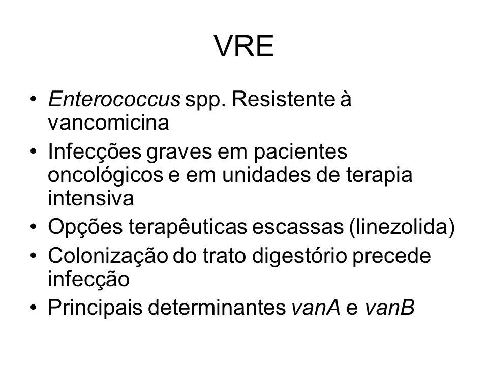 VRE Enterococcus spp. Resistente à vancomicina