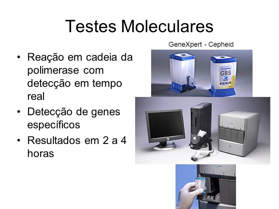 Testes Moleculares GeneXpert - Cepheid. Reação em cadeia da polimerase com detecção em tempo real.