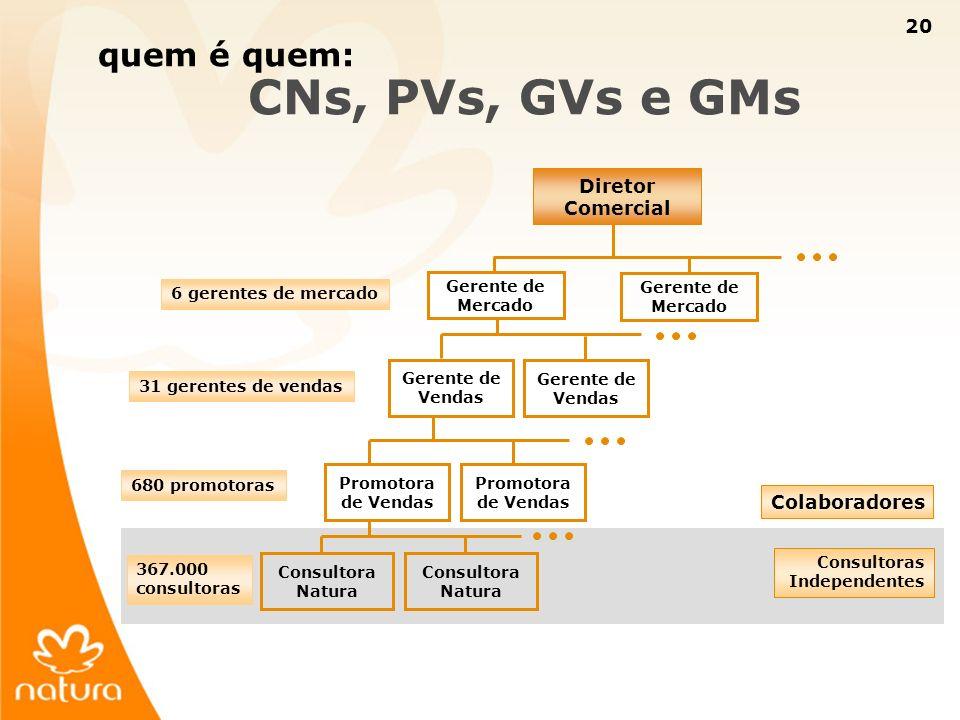 quem é quem: CNs, PVs, GVs e GMs