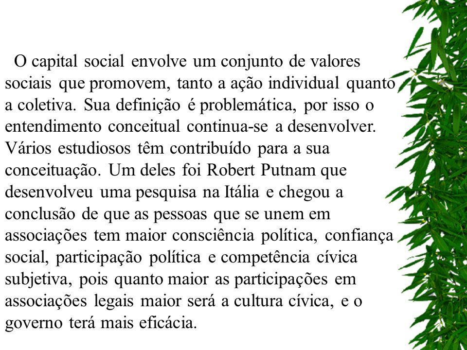 O capital social envolve um conjunto de valores sociais que promovem, tanto a ação individual quanto a coletiva.