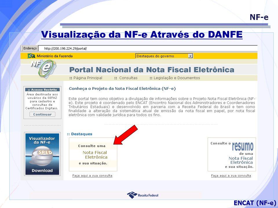 Visualização da NF-e Através do DANFE