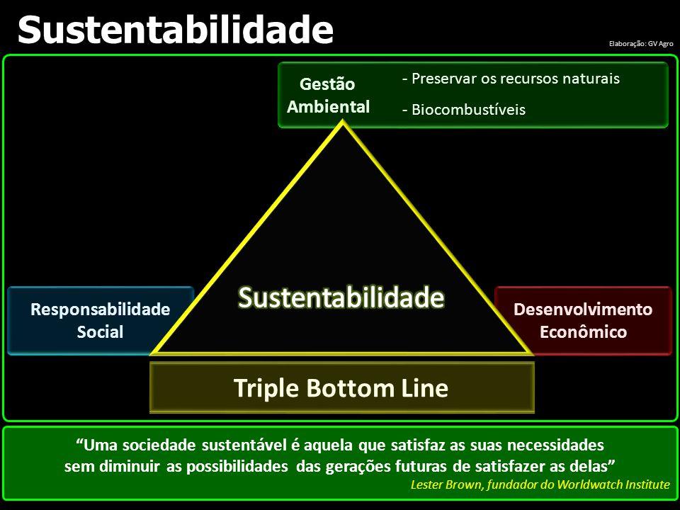 Responsabilidade Social Desenvolvimento Econômico