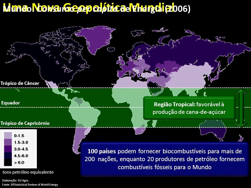 Região Tropical: favorável à produção de cana-de-açúcar