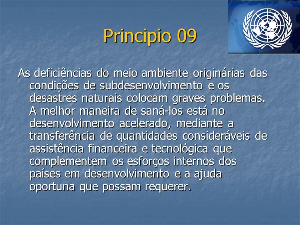 Principio 09