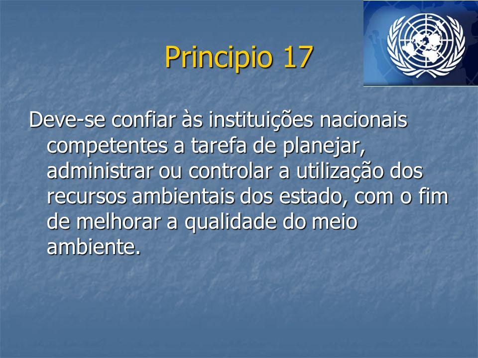 Principio 17