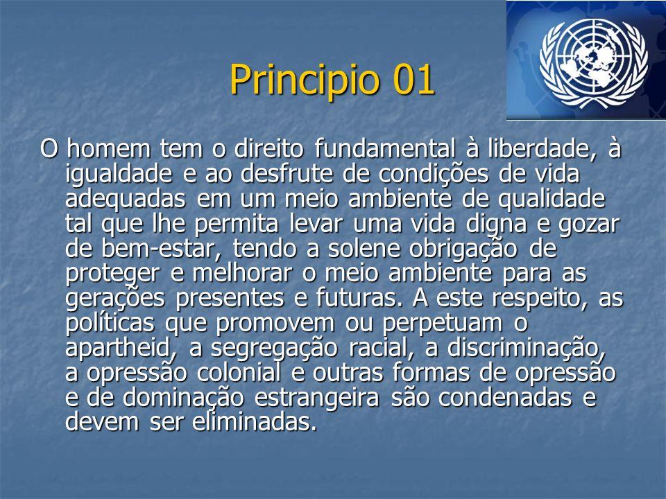 Principio 01