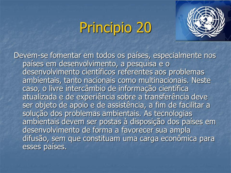 Principio 20