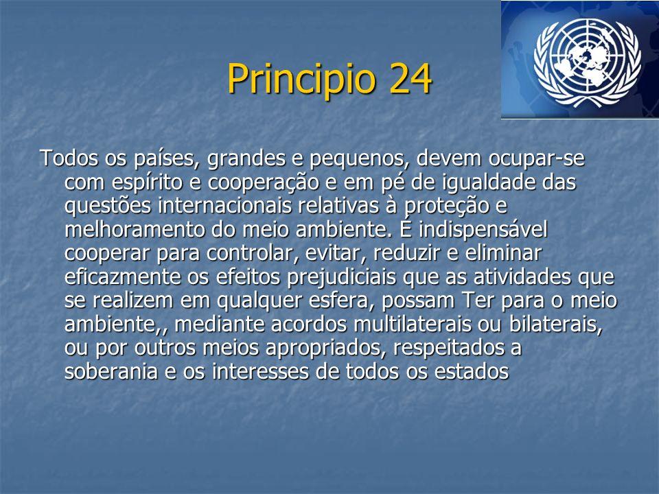 Principio 24