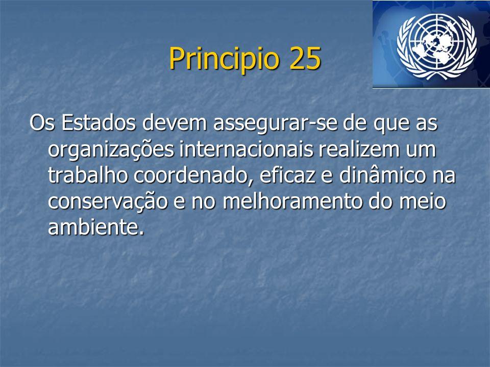 Principio 25