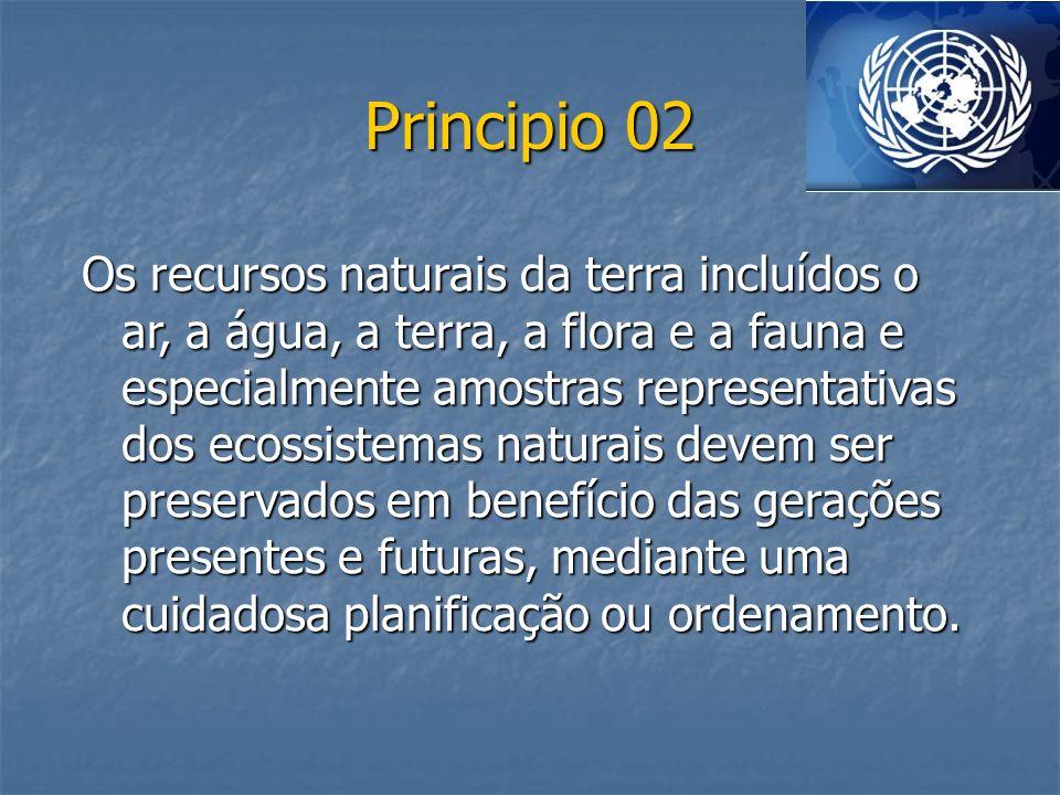 Principio 02