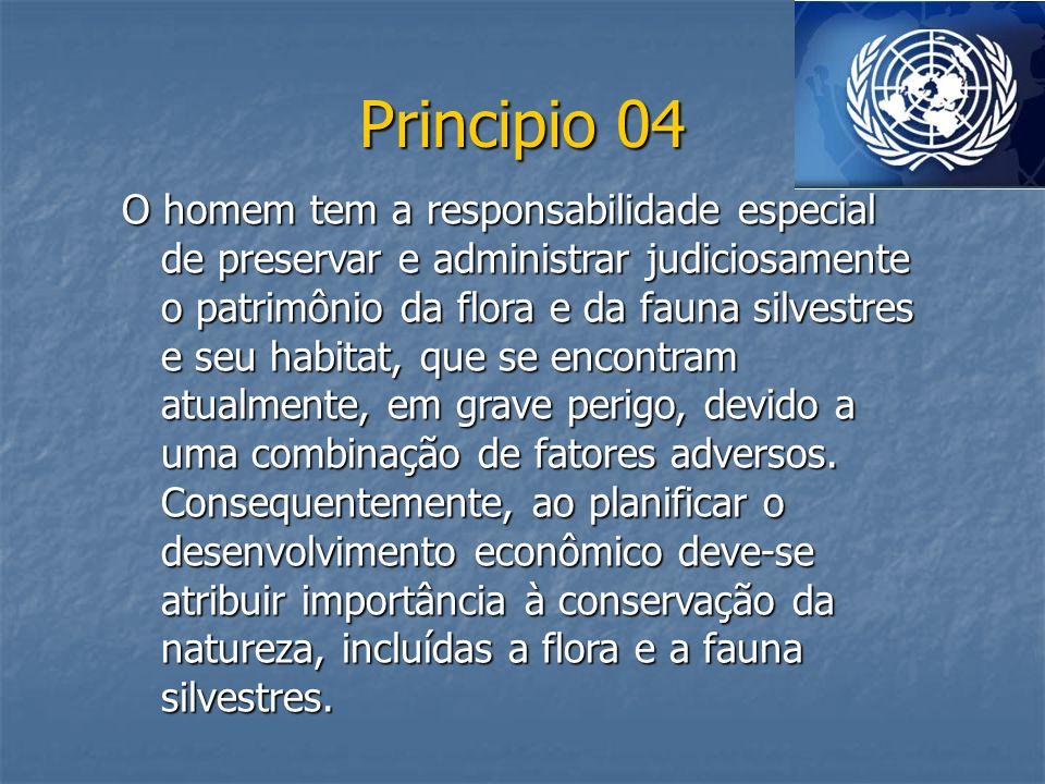 Principio 04