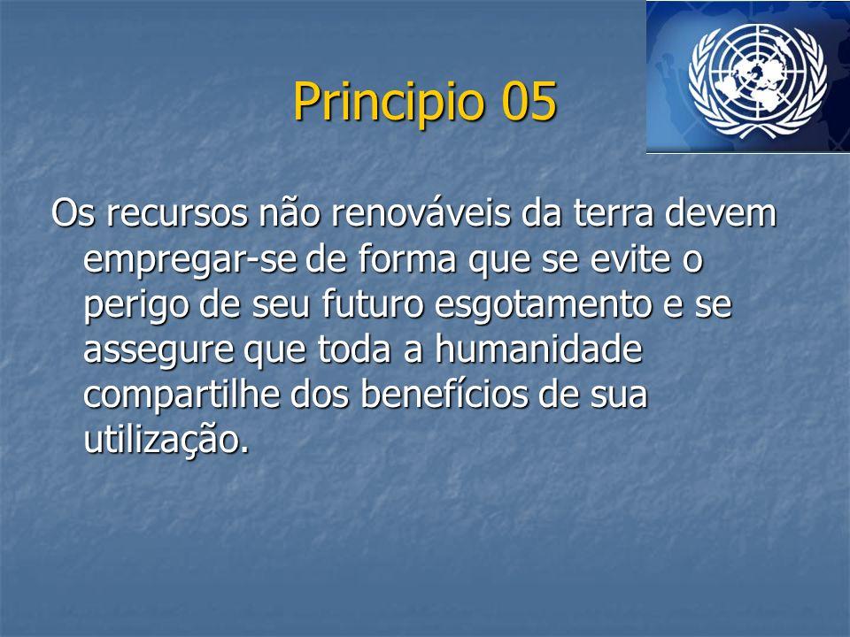 Principio 05