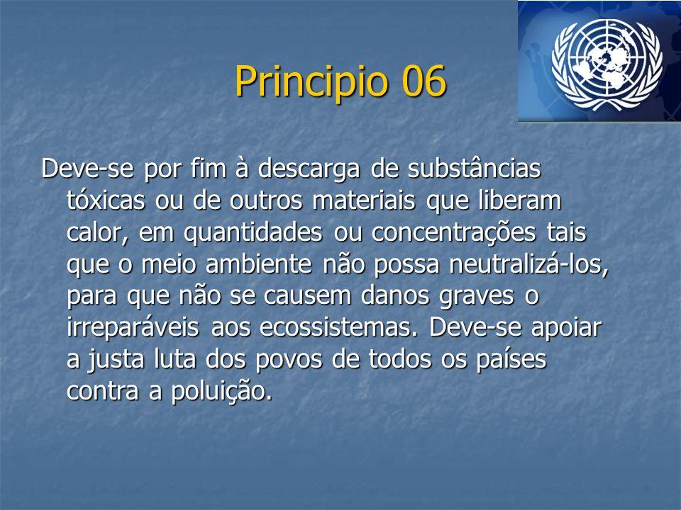 Principio 06