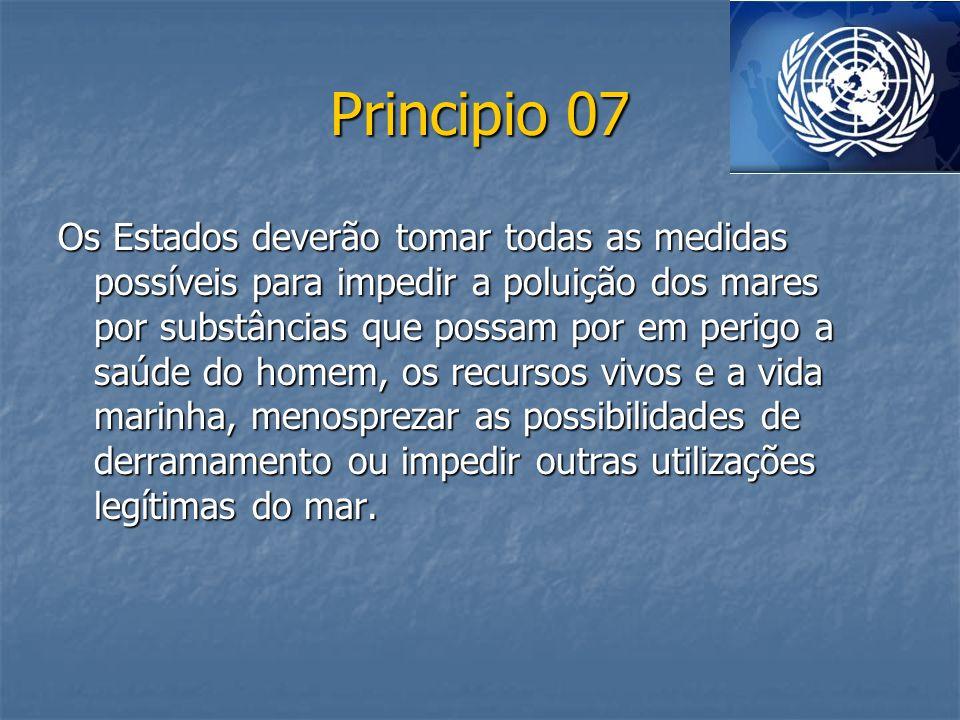 Principio 07